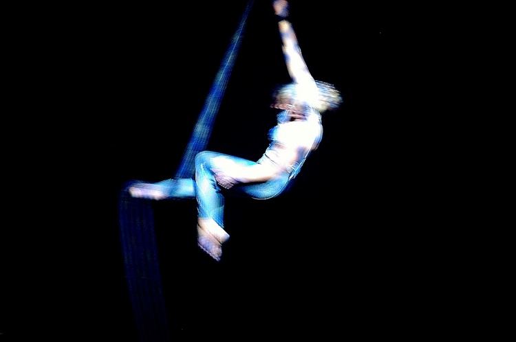 Espetáculos/Circus...
