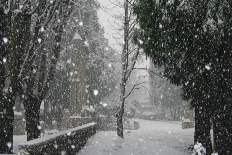 Resultado de imagem para neve a cair