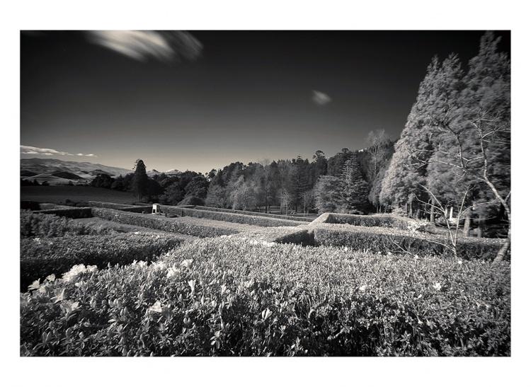 Paisagem Natural/White Land