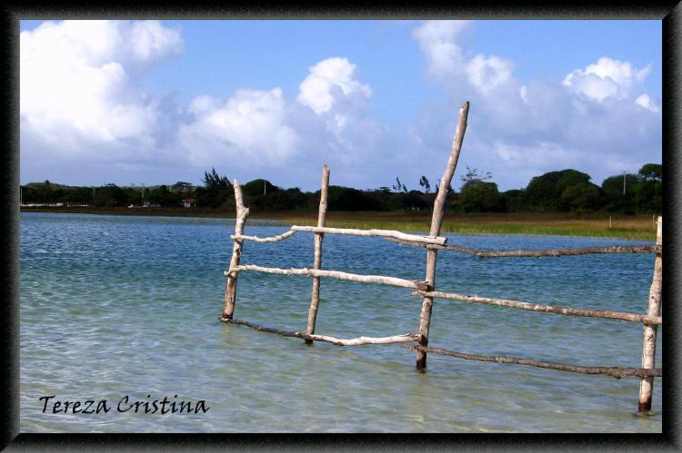 Paisagem Natural/Lagoa do carcará /Natal -RN