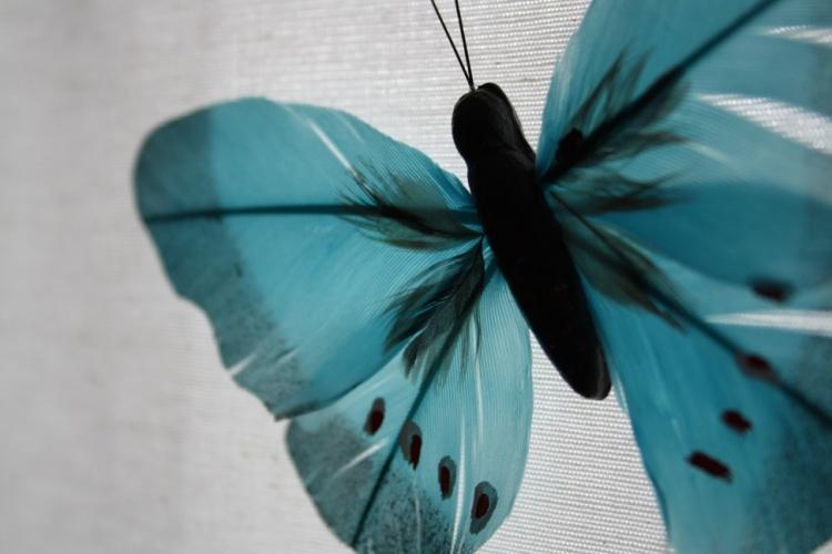 Outros/Presença azulada...