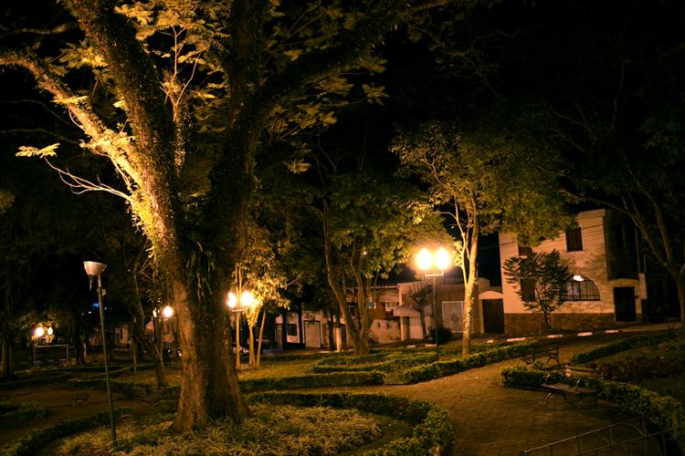 Noite fria no jardim Foto de Evandro | Olhares - Fotografia Online