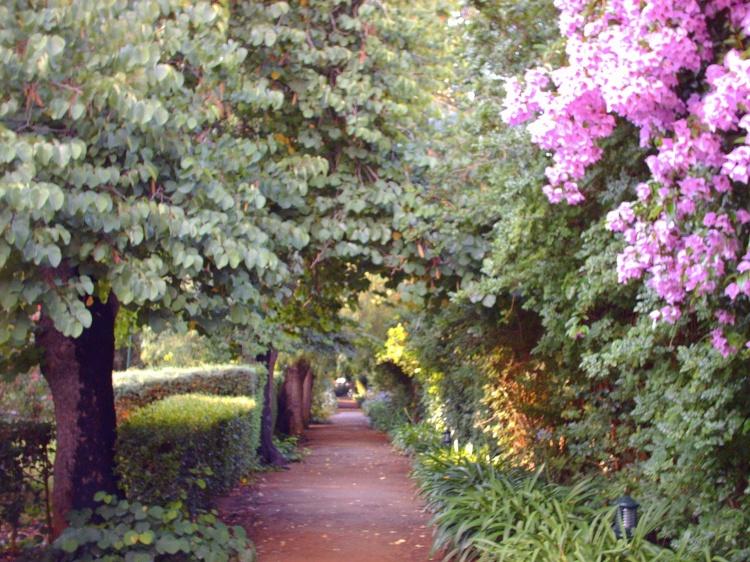 fotos de um jardim floridoUm passeio pelo jardim florido Foto de