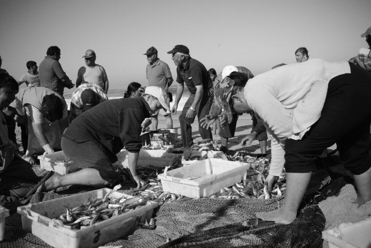 Fotojornalismo/Gentes do Mar.