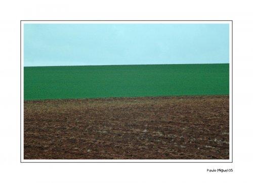 Paisagem Natural/Tricolor