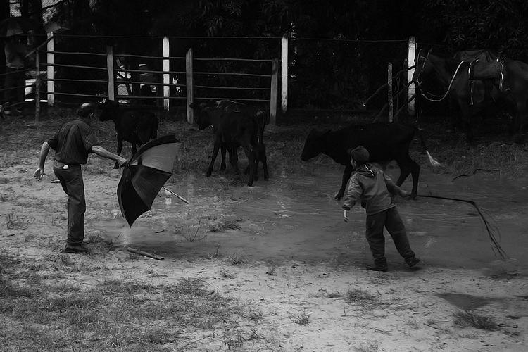 Fotojornalismo/Santa Luzia