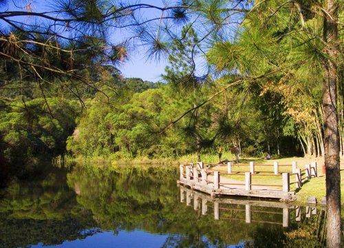 Paisagem Natural/Lagoa das Carpas