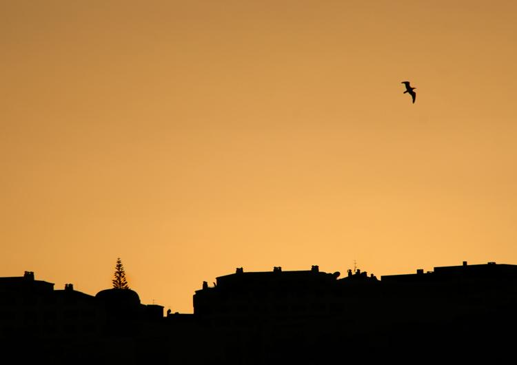 Gentes e Locais/albufeira sunset