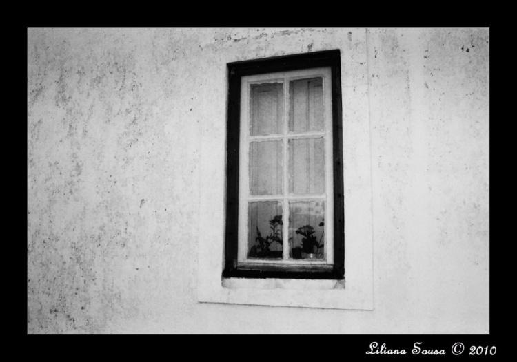 Outros/Uma casa na Escuridão