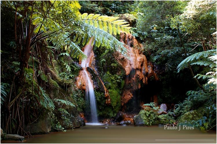Paisagem Natural/Caldeira Velha - São Miguel - Açores
