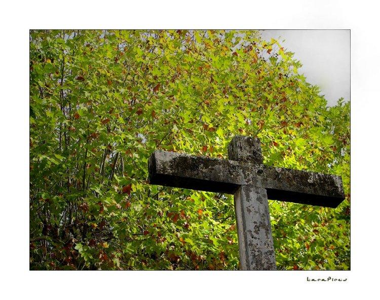 Gentes e Locais/A esperança é verde