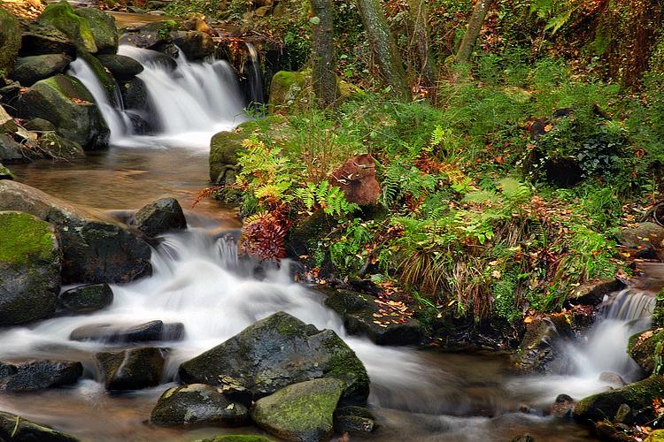 Paisagem Natural/Por este rio acima II