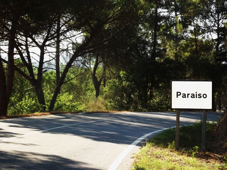Outros/Paradise