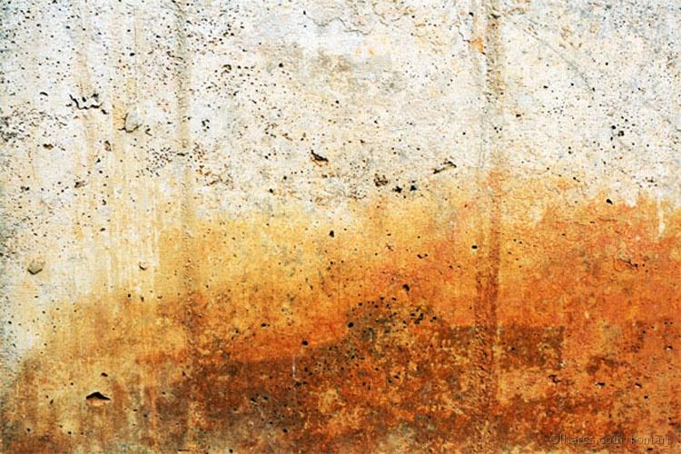 Paisagem Urbana/Pelos muros da cidade