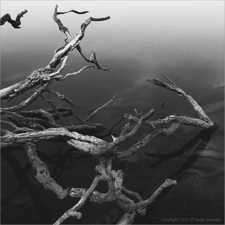 Abstrato/Azibo