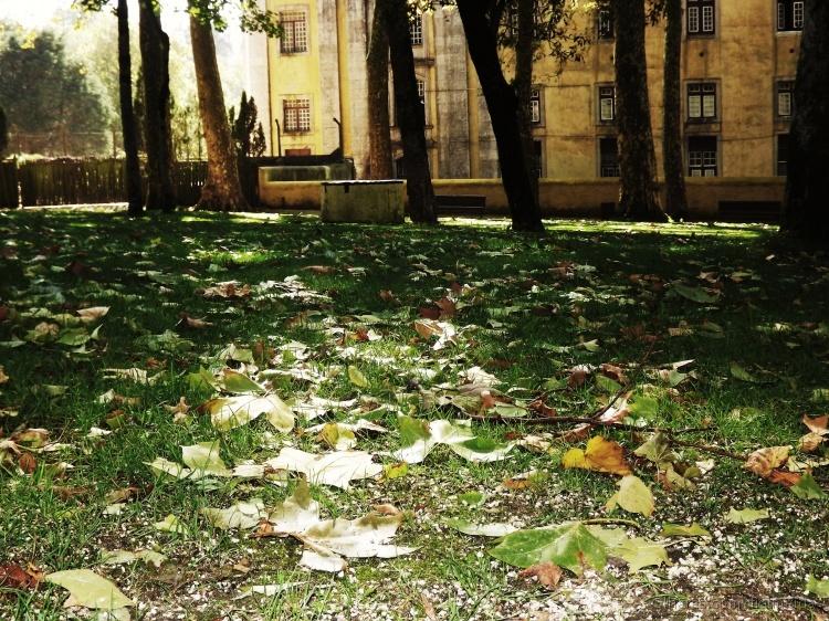 Outros/Autumn
