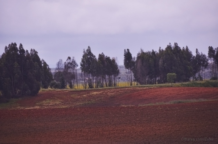 Outros/Portugal é lindo