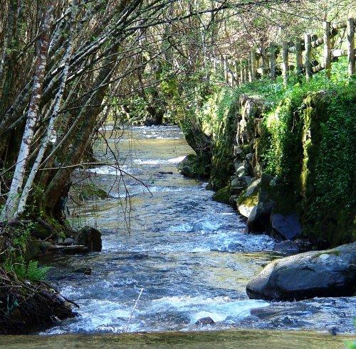 Paisagem Natural/Pelo rio abaixo