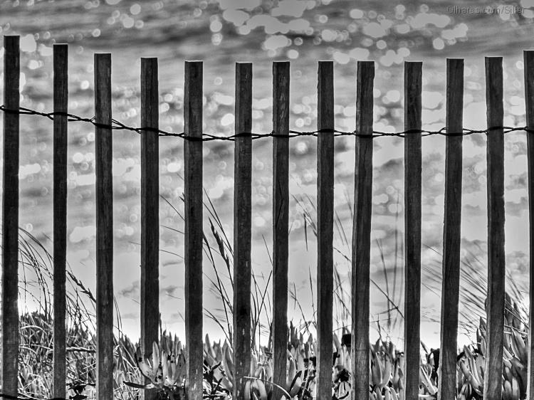 Abstrato/Quem foi que prendeu o mar?