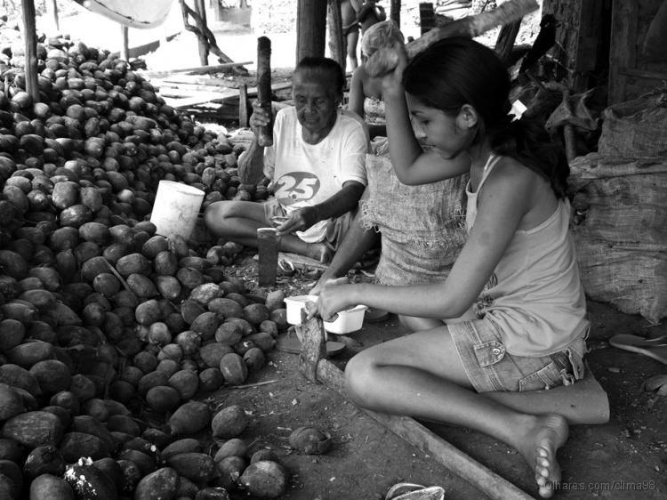 Gentes e Locais/Quebradeiras de coco babaçu (Tuntum MA)