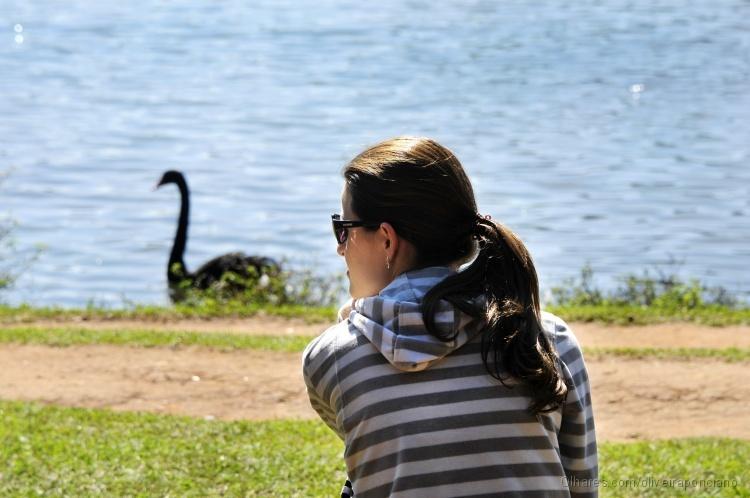 Paisagem Natural/Cisne Negro