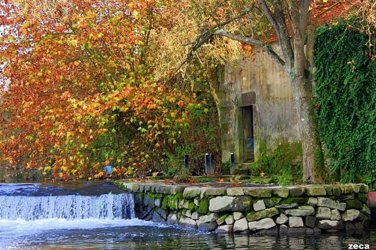 Paisagem Natural/outono no rio ave