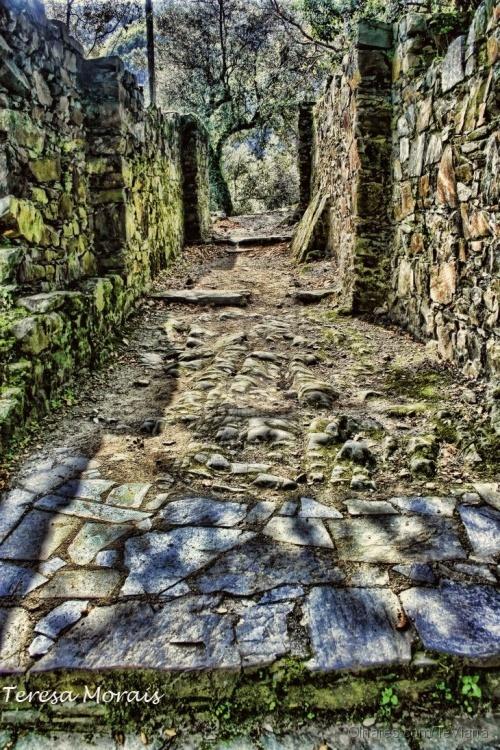 História/Ruinas do Castelo