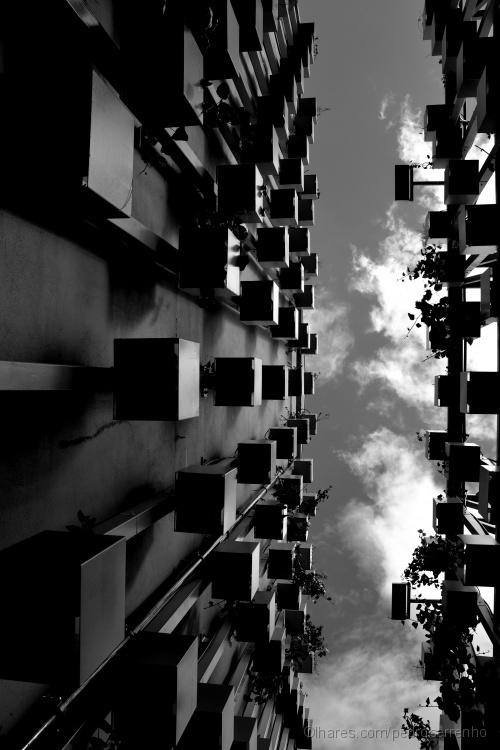 Paisagem Urbana/O Ceu e o limite
