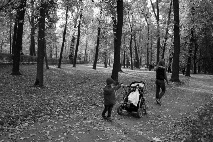 Gentes e Locais/Domingo no Parque