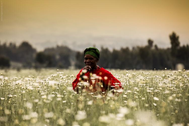 Gentes e Locais/Ruanda