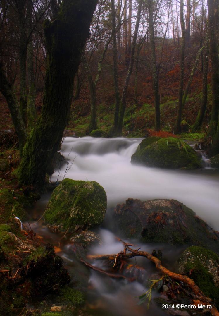 Paisagem Natural/Secret place