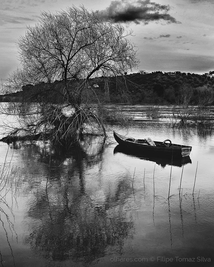 """Outros/""""A minha vida é um barco abandonado"""""""