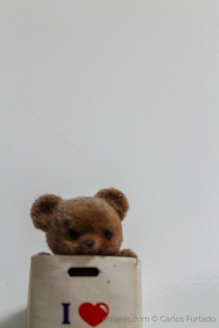 Animais/Ursinho no saco