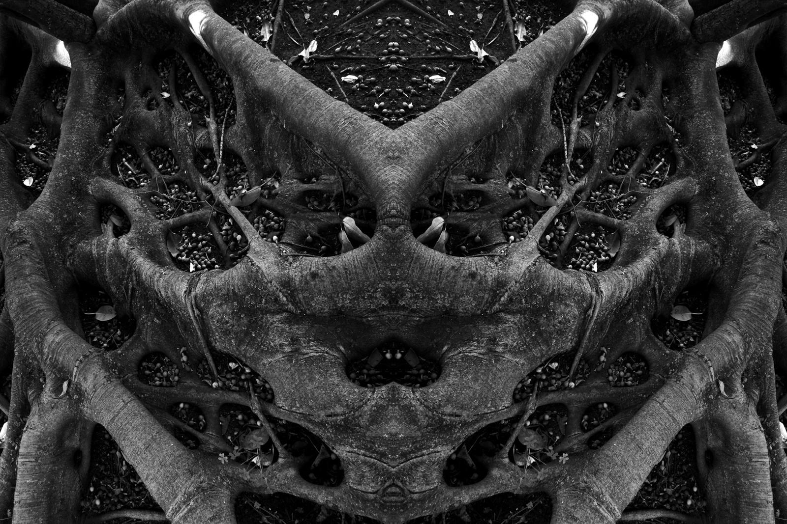 Abstrato/alien.