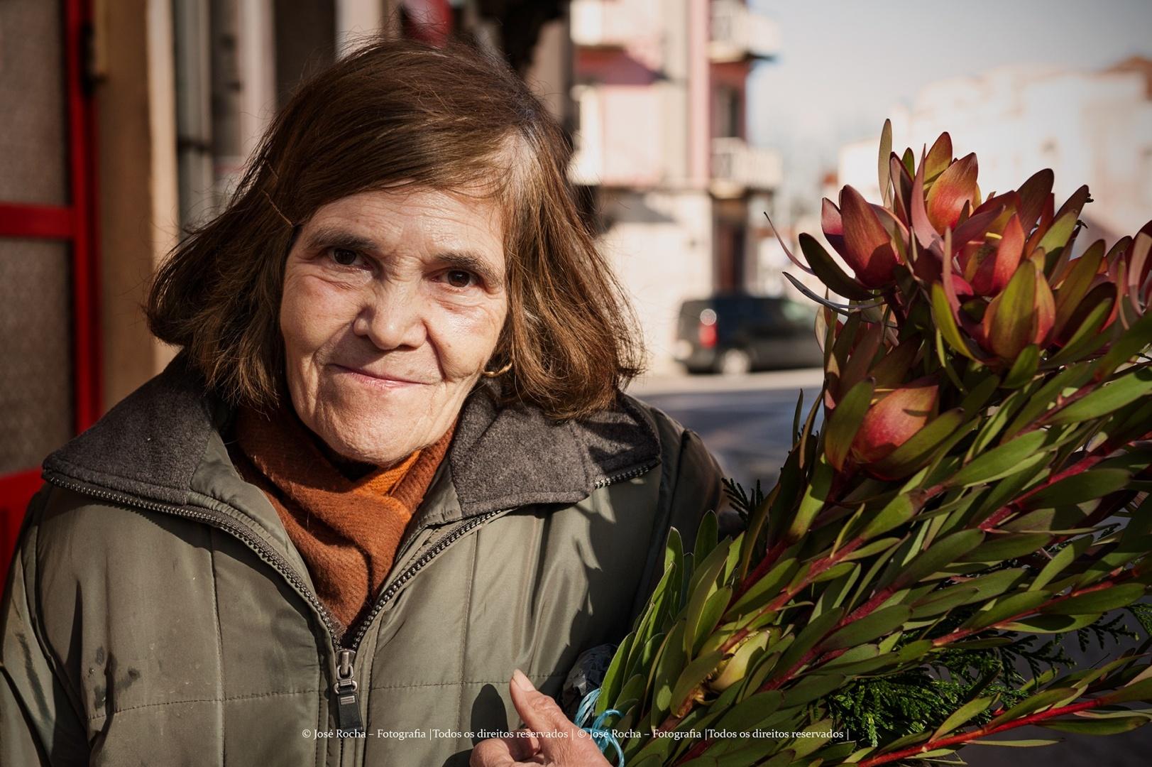 Retratos/Ao regaço não levo rosas...