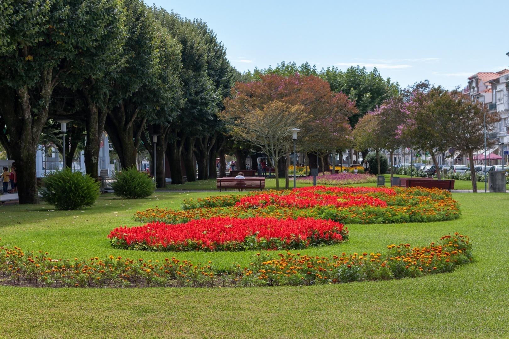 Paisagem Urbana/Jardim Marginal