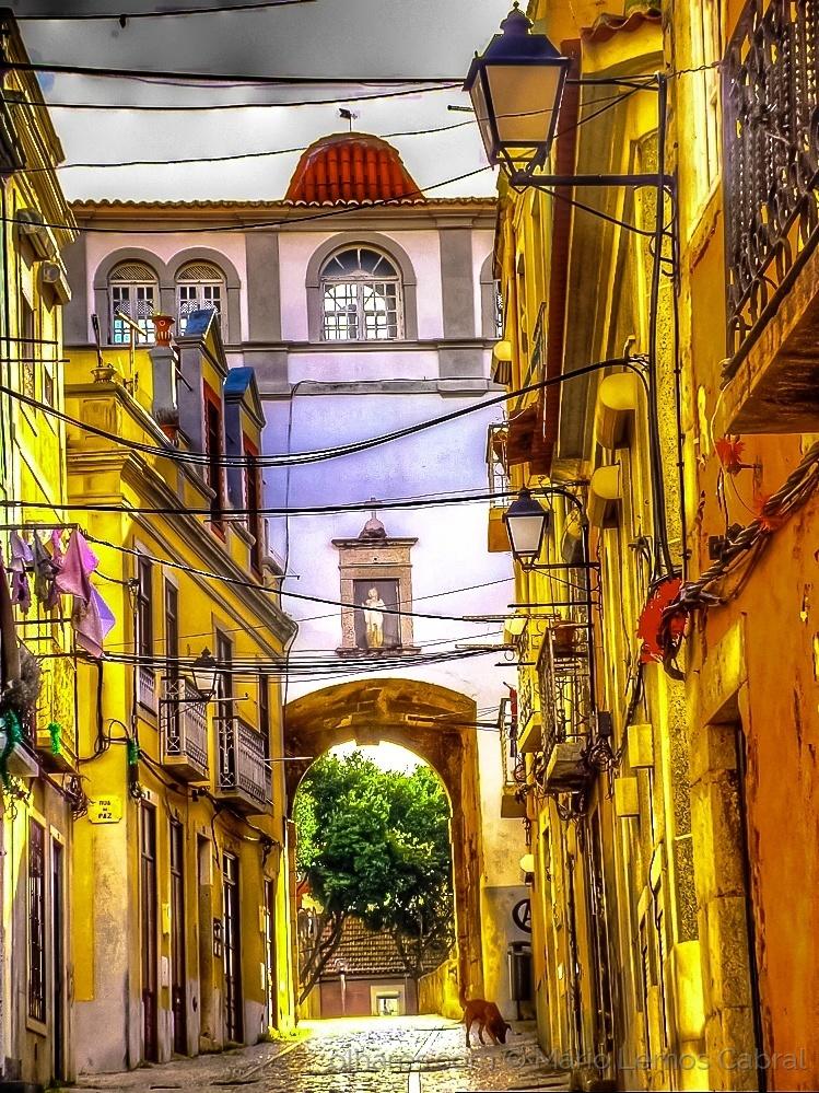 Paisagem Urbana/Rua Arronches Junqueiro - Ruas de Setúbal (ler)
