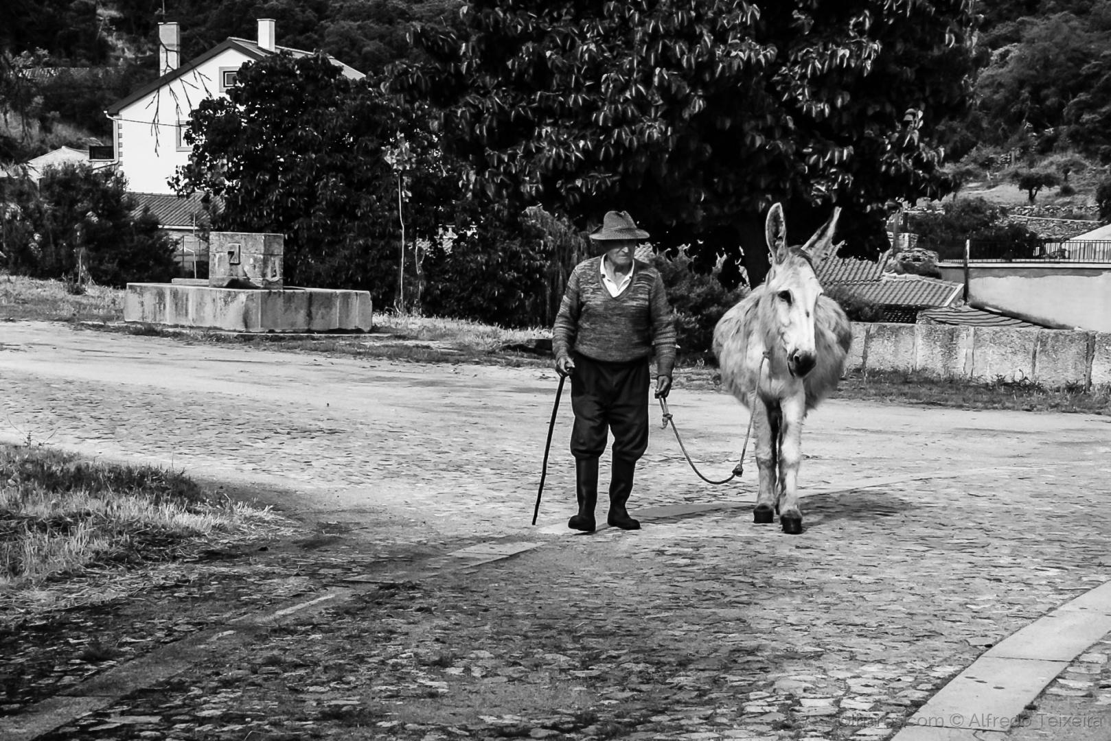 Gentes e Locais/Companheiros de jornada