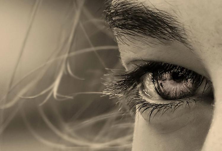 Retratos/[ Olhos ao vento ]