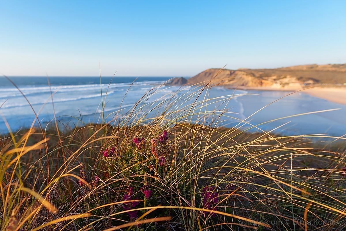 Paisagem Natural/Praia Da Amoreira, Aljezur