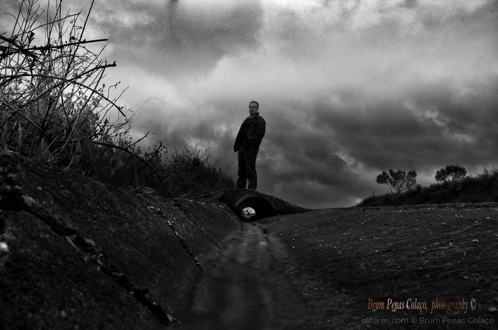 Retratos/KING OF THE HILL