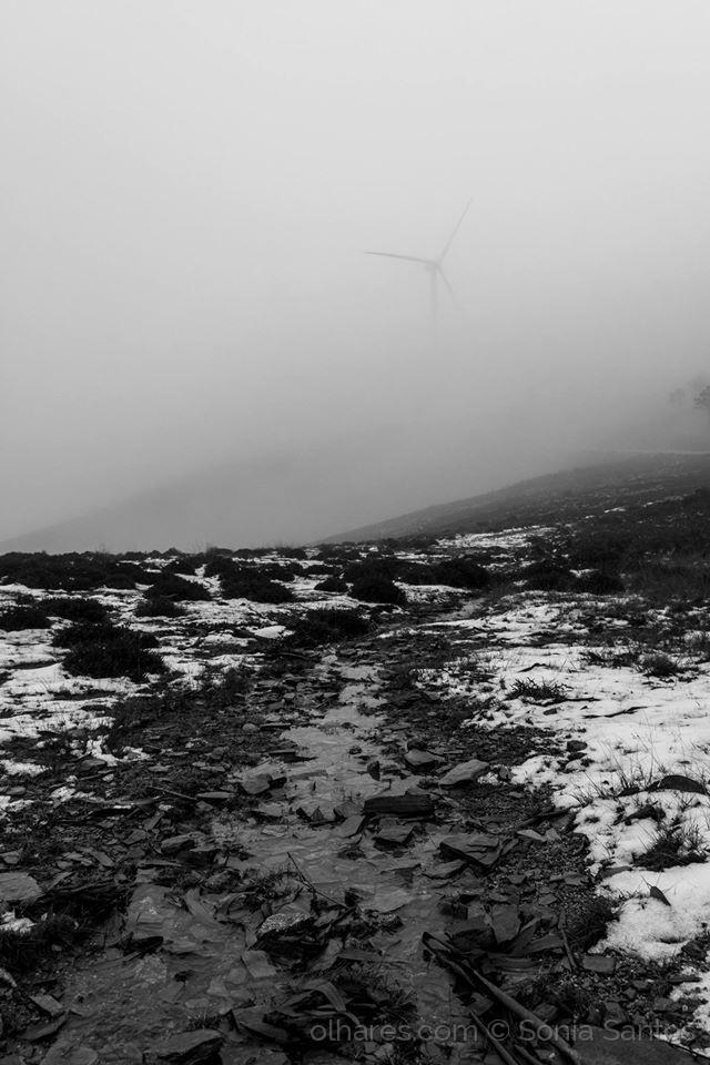 Paisagem Natural/O que esconde o nevoeiro?