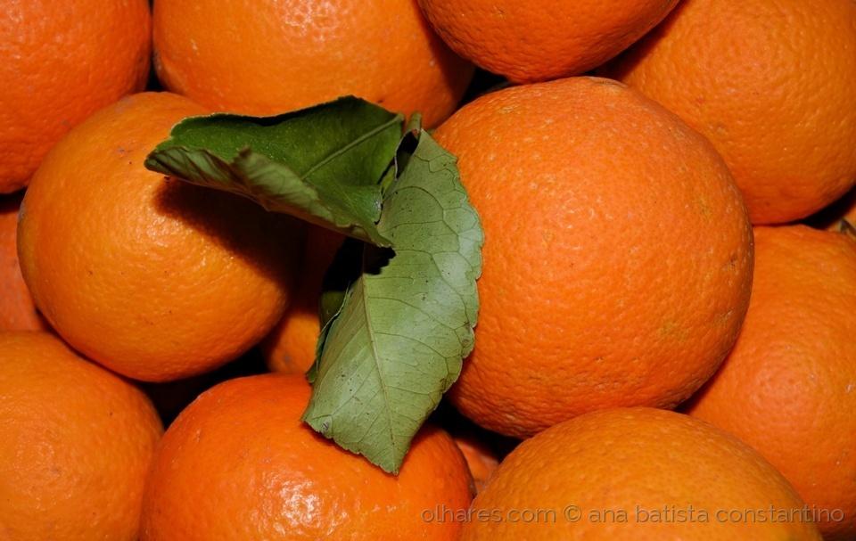 Macro/Vitamina C ...
