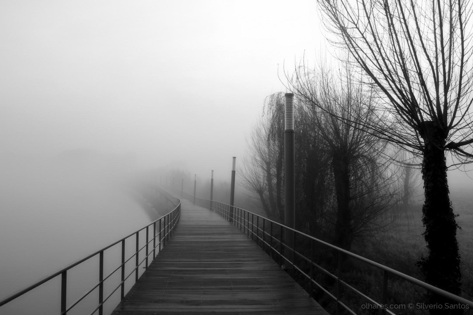 Outros/Caminhos no nevoeiro