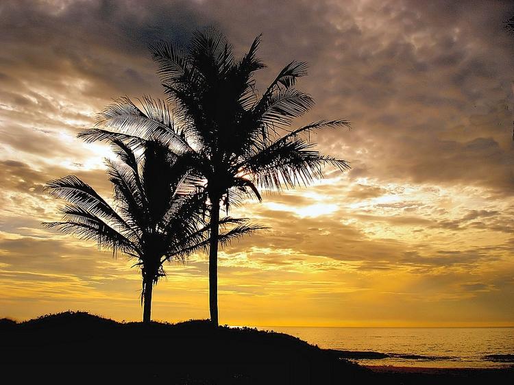 Paisagem Natural/O amanhecer