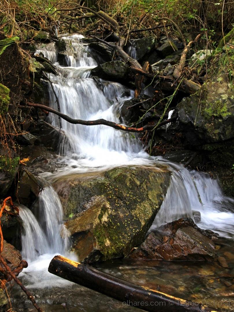 Paisagem Natural/Encantos da Serra da Lousã