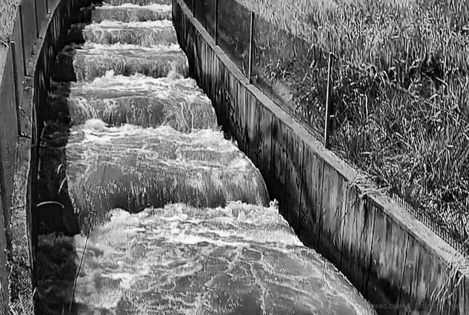 Arte Digital/Agua conduzida