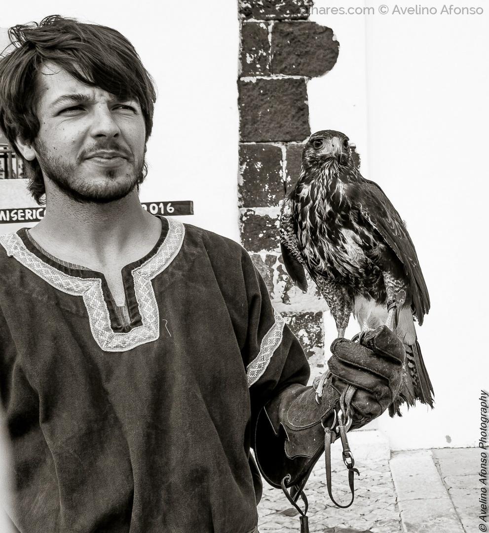 Animais/Art Falco