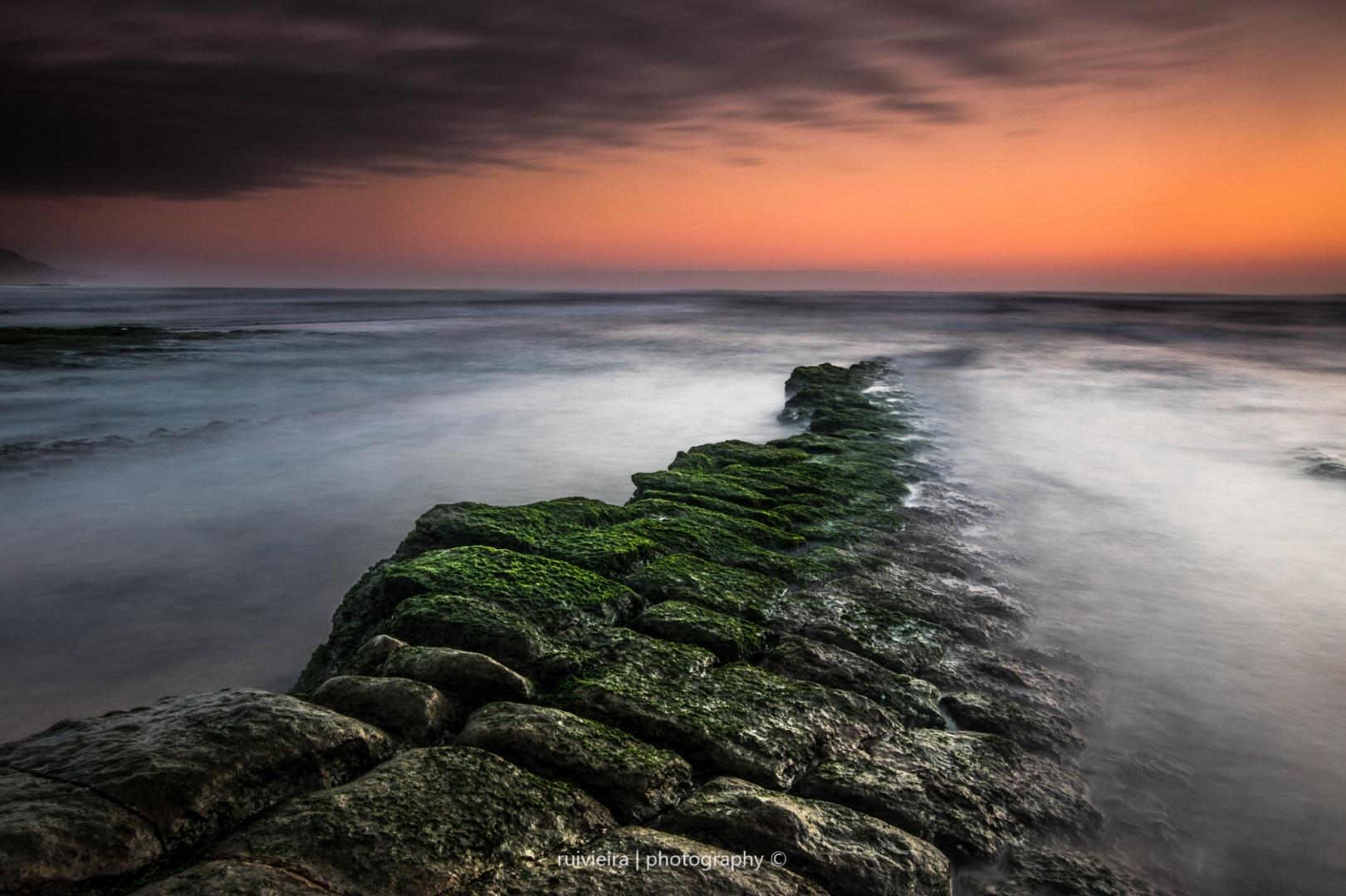Paisagem Natural/Toward the sea bottom