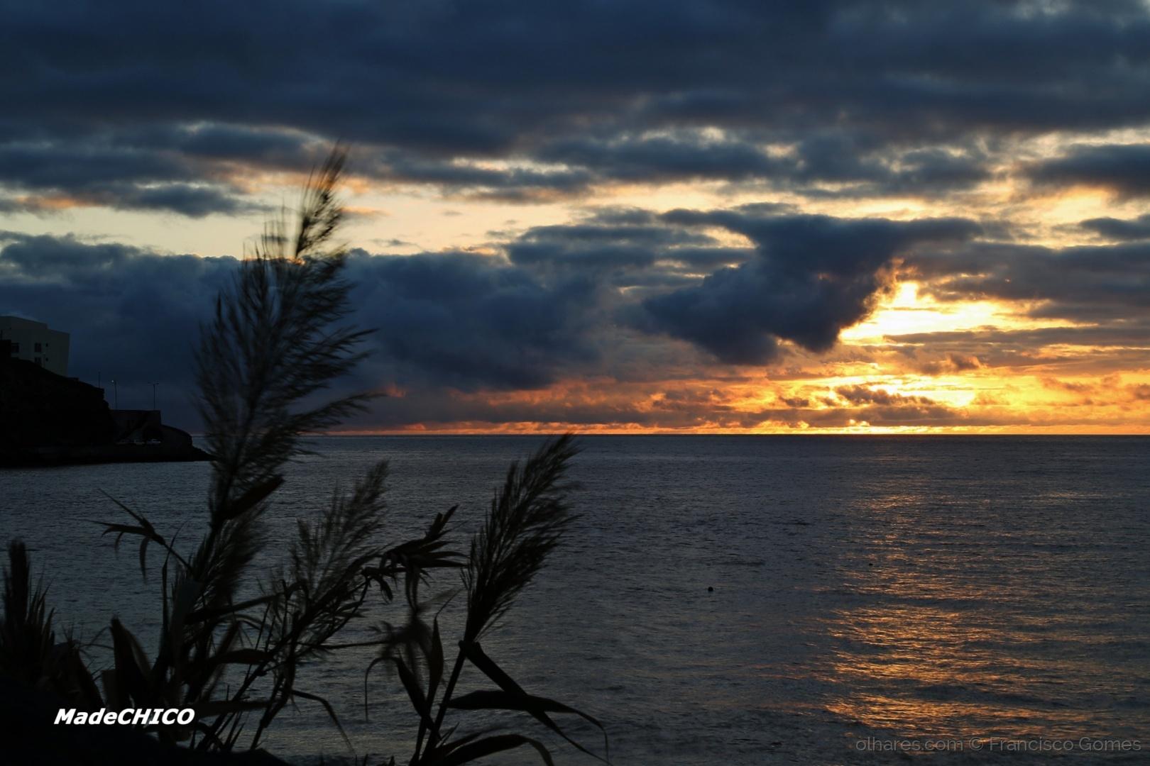 Paisagem Natural/Bom dia da Ilha - 36